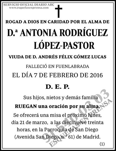 Antonia Rodríguez López-Pastor